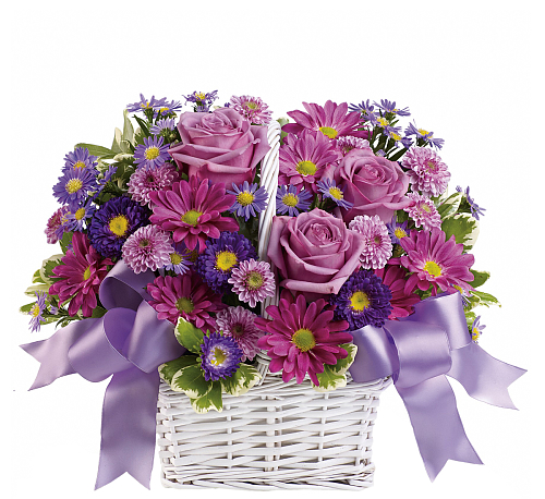 Teleflora's Daisy Daydreams Bouquet