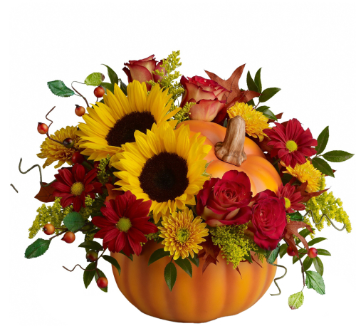 Teleflora fall flowers t11h110a fa28ta canada flowers as shown upgraded premium rustic autumn flowers mightylinksfo
