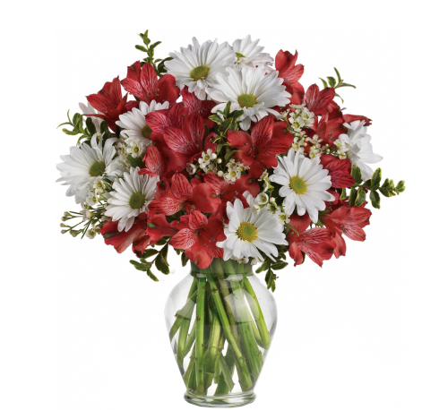 Teleflora's Dancing in Daisies Bouquet