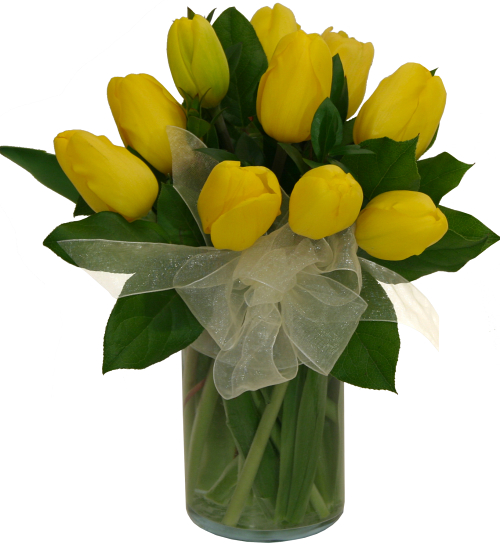 Ten Yellow Tulips In A Vase