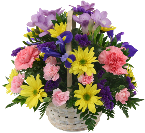 Uk flower delivery fresh flower basket gba7aa canada flowers fresh flower basket izmirmasajfo