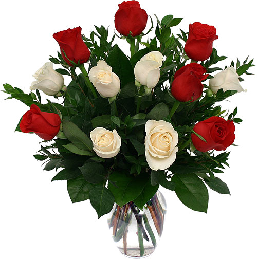 Eighteen Premium Roses Arranged