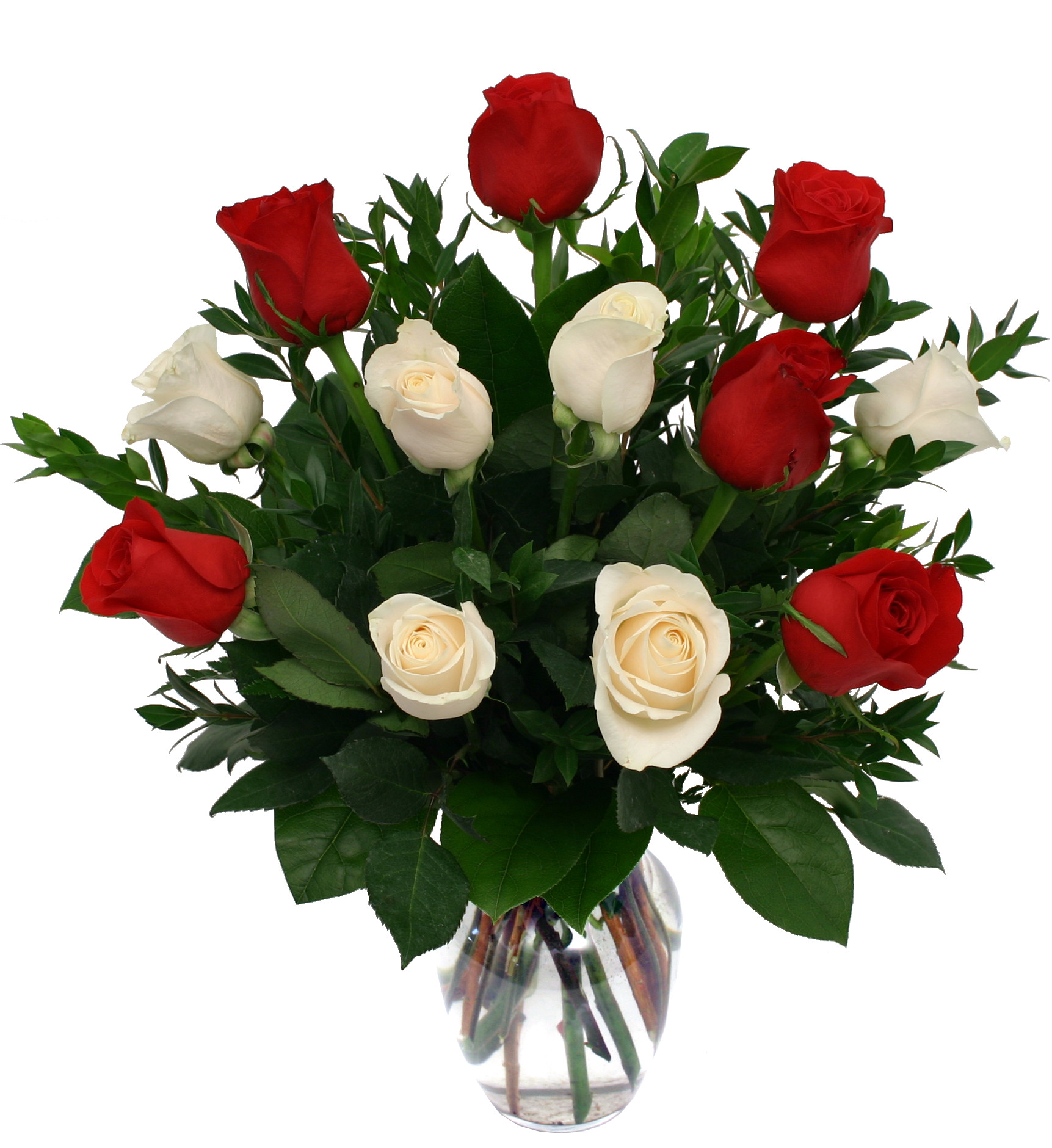 Red and White Roses For Her